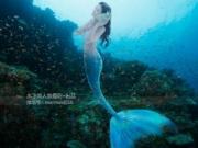 <b>沈梦瑶- [TGOD推女神]水下美人鱼写真迷失在蓝色海洋里</b>