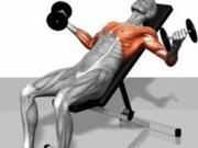 健身房里器械如林你都熟悉吗