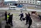 云南多名城管打人画面曝光 多人对一名女子拳打脚踹令人震惊